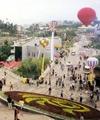 Expo - plazas representing Ukrainian companies