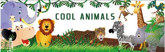 Cool-animals – цікавий Інтернет ресурс про тварин та птахів