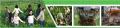 Служба охорони природи