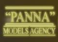Модельне агенство ПАННА