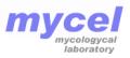 Мікологічна лабораторія  Міцел